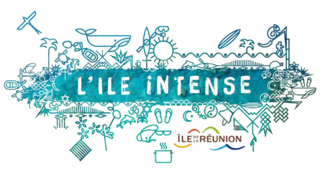 logo-irt-ile-intense