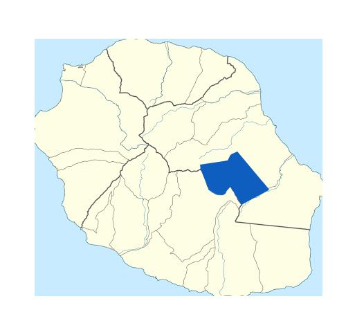 la-plaine-des-palmistes