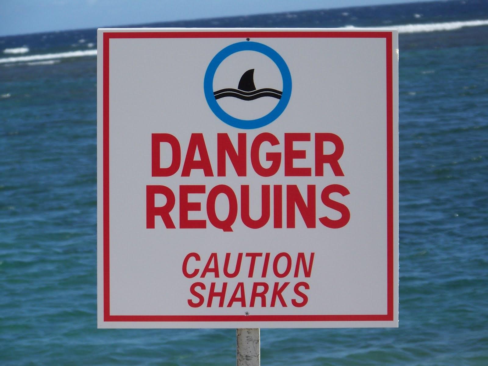 panneau-risque-requins