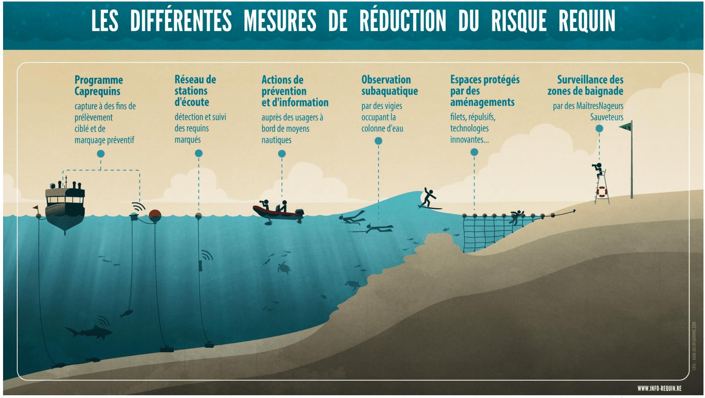 Plan-réduction-risque-requins-réunion