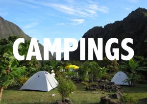camping-reunion