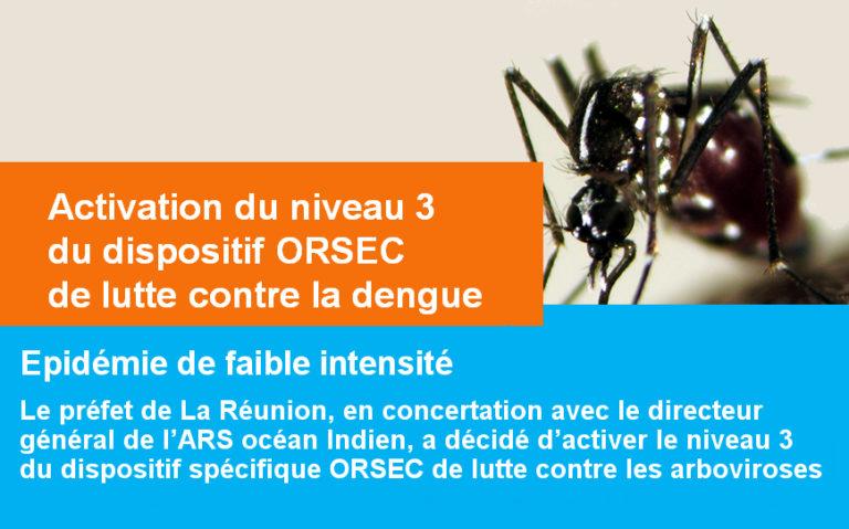 Epidémie de dengue : 1388 cas au 17 avril