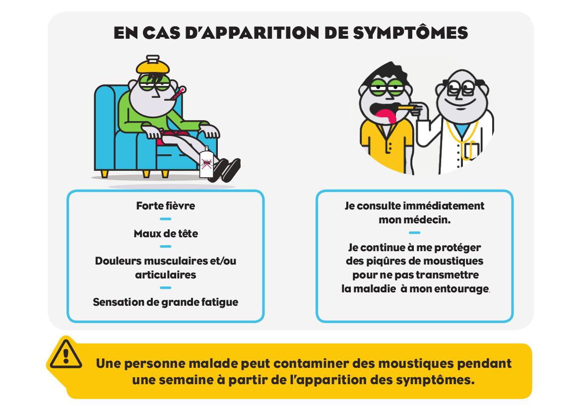 epid mie de dengue 6491 cas recens s habiter la r union. Black Bedroom Furniture Sets. Home Design Ideas