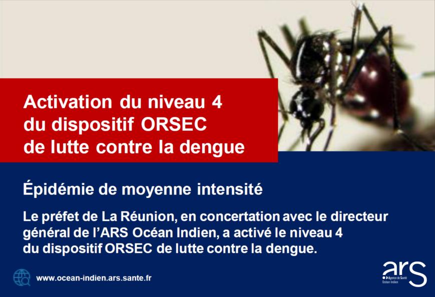 Epidemie-Dengue-Réunion-Niveau-4