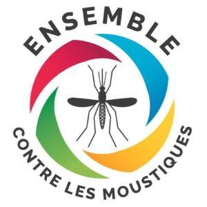 Epidémie de dengue à La Réunion : inquiétude à l'arrivée de l'été