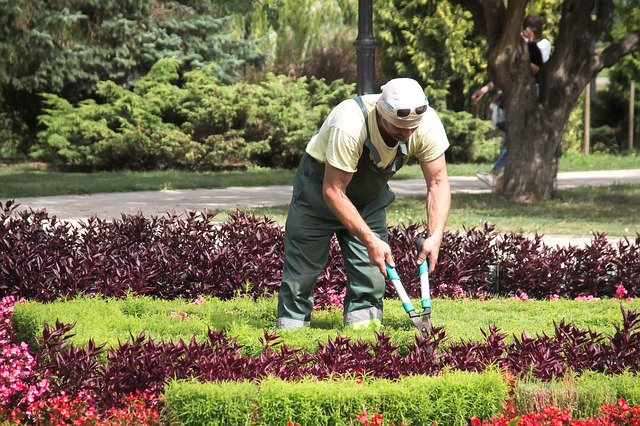 Emploi à La Réunion : les 20 métiers les plus recherchés