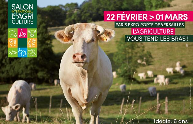 Agriculture à La Réunion : les producteurs médaillés 2020