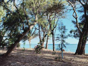 lagon et plages de la réunion ouest réunion